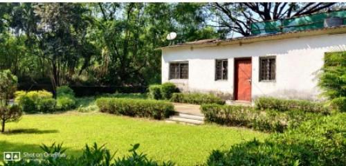 Garden/lawn Mohan Devasi